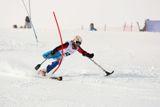 В первый соревновательный день на I этапе Кубка Европы по горнолыжному спорту среди лиц с поражением опорно-двигательного аппарата и нарушением зрения в Австрии  российские спортсмены  завоевали золотую и бронзовую медали