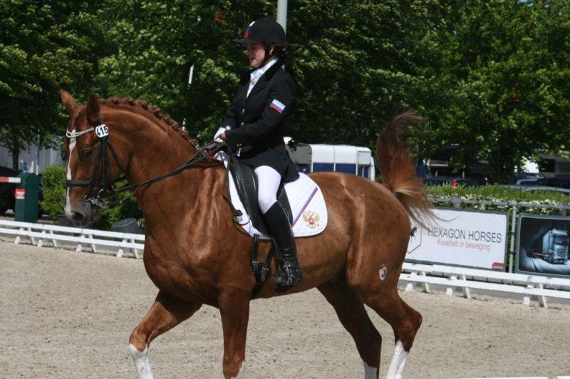 Российские спортсмены на международных соревнованиях по конному спорту во Франции проведут отбор на чемпионат Европы