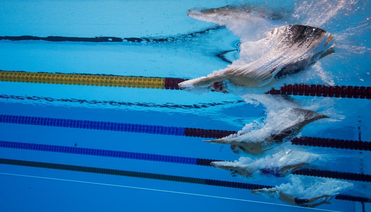 МПК объявил о назначении К. Николсона руководителем  Федерации Всемирного паралимпийского плавания