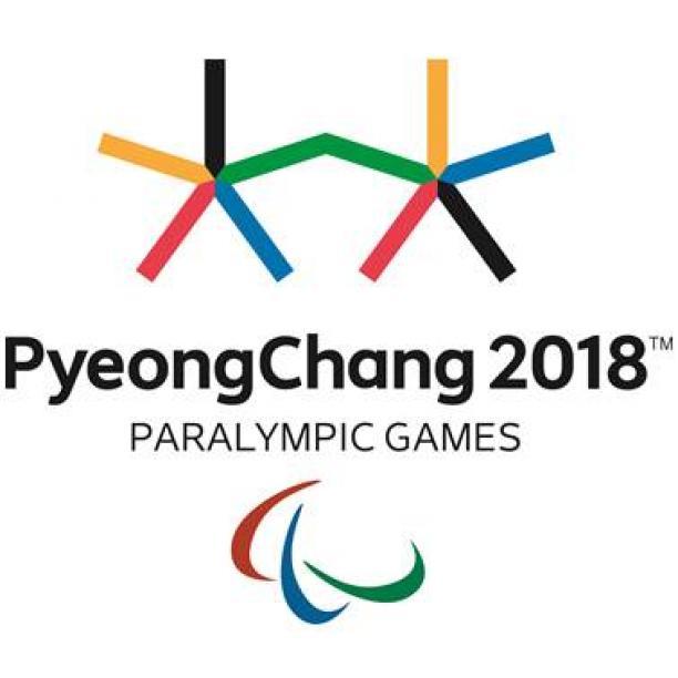 Выдержка из «Правила по поведению зрителей во время проведения Зимних Паралимпийских Игр 2018 в Пхенчхане» относительно проноса флагов на трибуны